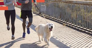 Pareja corriendo con un perro